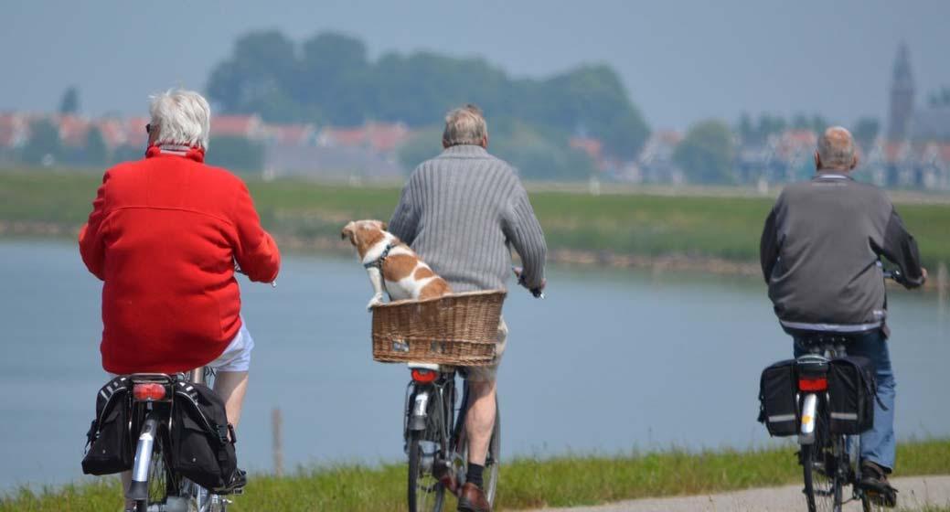 vieux monsieurs qui font du vélo
