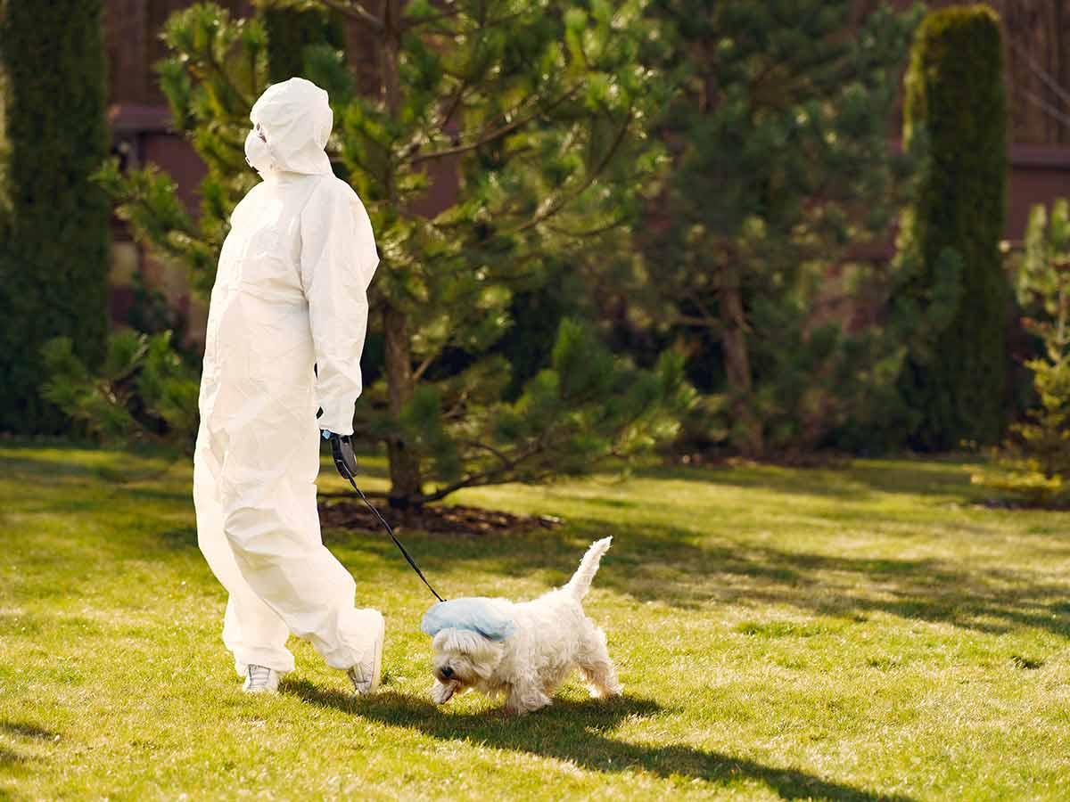 femme avec un habit protecteur qui marche avec son chien
